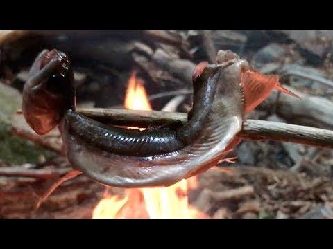 拾った棒で魚を突く 遭難した山から脱出#2 survaival in japan