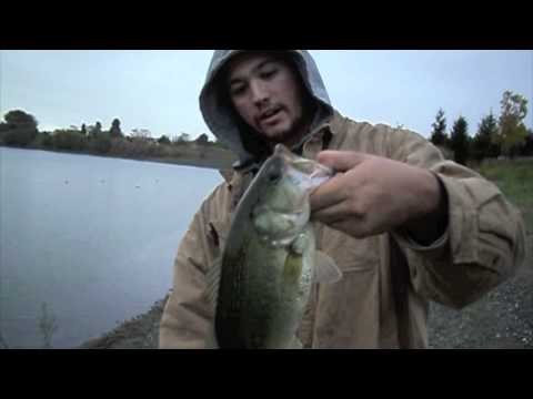 """""""Largemouth Bass Caught At Quarry Lakes In Fremont California!"""" by Verdugoadventures"""