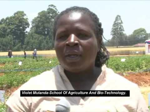 University Of Eldoret 4th Annual Agri Business Trade Fair 1