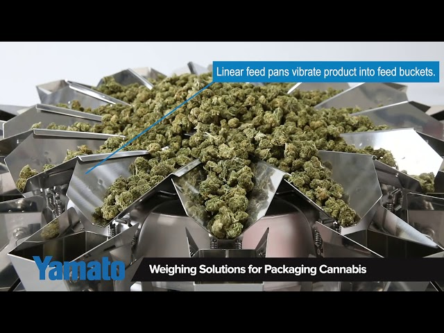 Cannabis, Multihead Weigher/Mehrkopfwaage, Yamato Scale