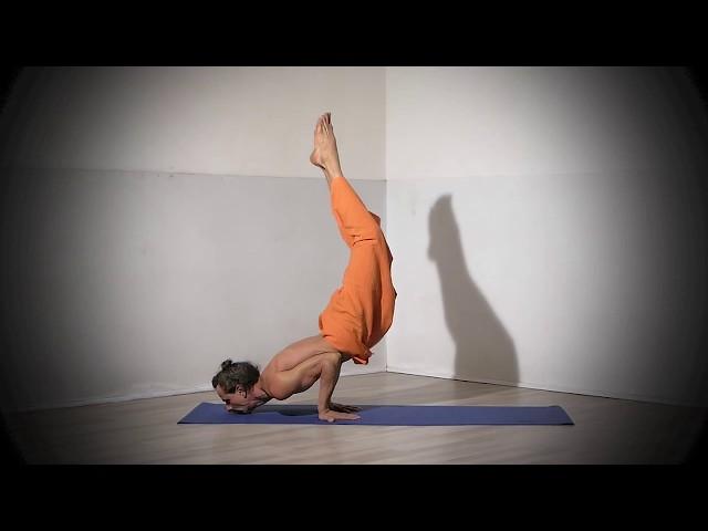 Posture de Yoga : Enchaînement en Mayurasana / Posture du Paon