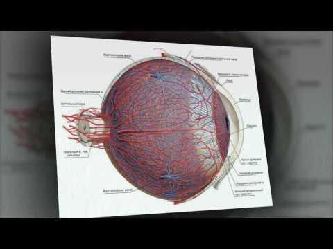 Как улучшить кровоснабжение глаз