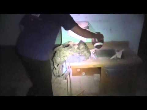 CDC Documentary