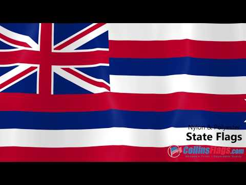 Hawaii State Flag Overview