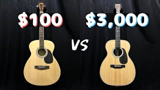 $100 vs $3000 Guitar | Cheap vs Expensive | Acoustic guitar comparison