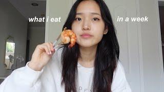 what i eat iฑ a university week (korean food & realistic)