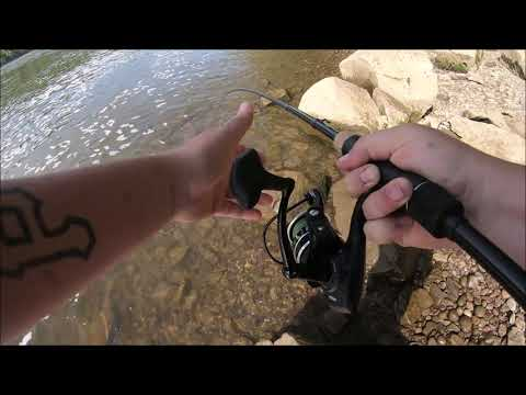 PA Spring Dam Fishing - Huge Walleye! (New Personal Best)