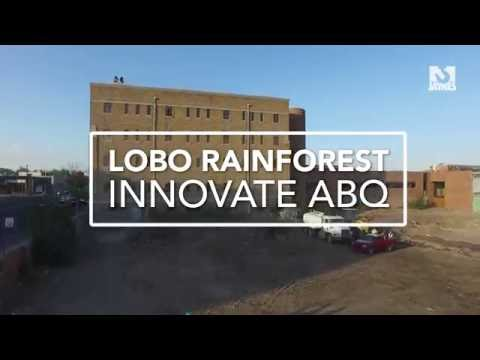 Innovate ABQ Lobo Rainforest - Let's get to building.