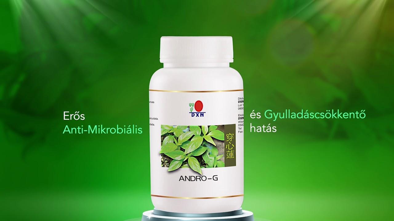 Green Coffee - kapszula – BioTechUSA