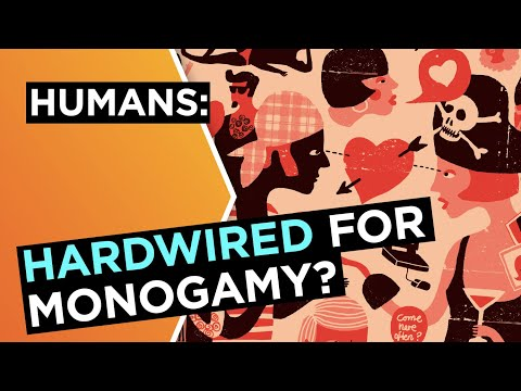 Are humans hardwired for monogamy? | Helen Fisher | Big Think
