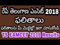 TS EAMCET 2018 Results ||In Telugu|| How to check TS EAMCET 2018 Results| టీయస్ ఎంసెట్ 2018 ఫలితాలు