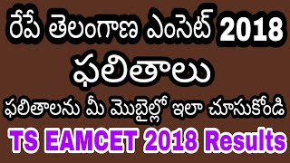 TS EAMCET 2018 Results ||In Telugu|| How to check TS EAMCET 2018 Results| టీయస్ ఎంసెట్ 2018 ఫలితాలు