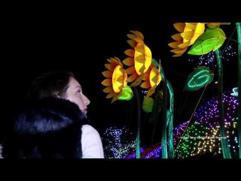 IZU GRANDPAL PARK -grand illumination-