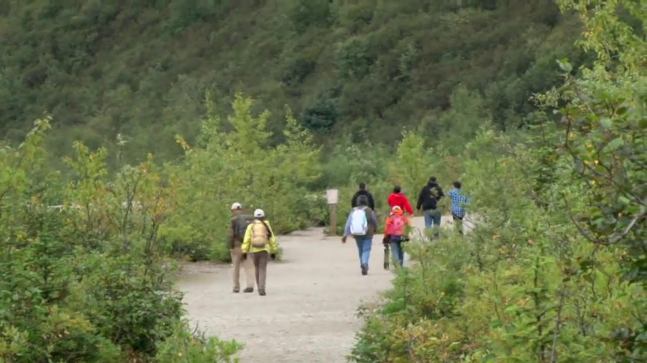 Mendenhall Glacier Amp Gardens Youtube