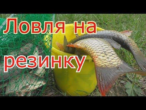 Рыбалка на РЕЗИНКУ