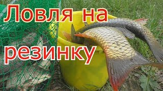 Рыбалка на РЕЗИНКУ и ловля карпов на закидушку (Часть 1). My fishing