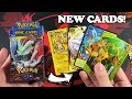 I DISCOVERED BRAND NEW POKEMON CARDS THAT HAVE NEVER BEEN SEEN!