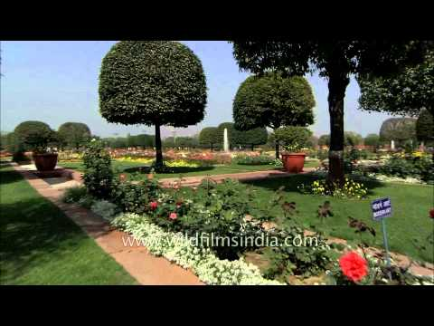 Mughal garden: One of the most beautiful gardens in India