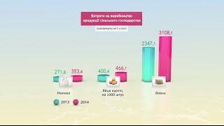 Видеоинфографика. Украина сегодня