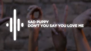 sad puppy don t you say you love me 6alax6 music release
