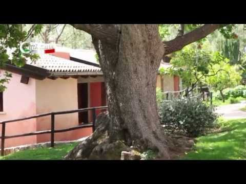 Welcome to: Camerota - Città Italia TV