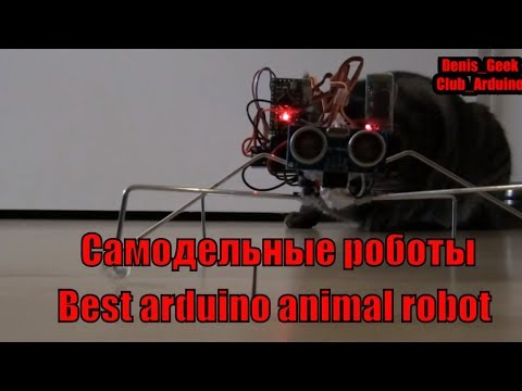 Самодельные  роботы на ардуино Топ 10 лучших животноподобных роботов