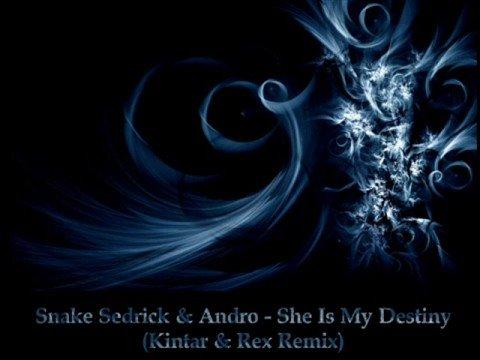 Snake Sedrick & Andro - She Is My Destiny