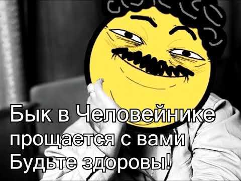 Дмитрий Быков о