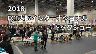 2018.12.2インテックス大阪で行われたFCI大阪インターナショナルドッグ...