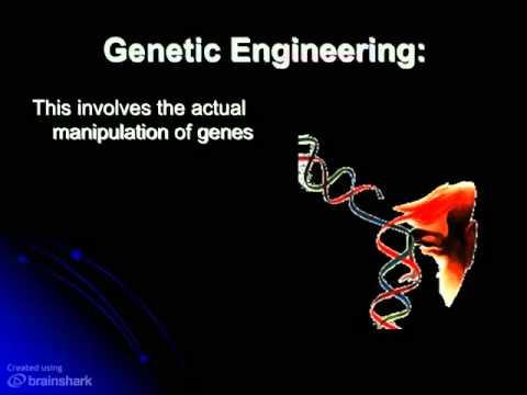 shop plant molecular biology molecular genetic
