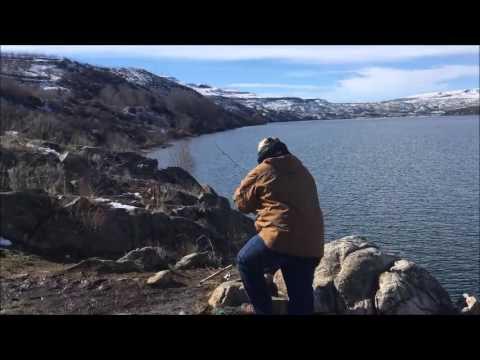 Roofus Woods Triploid Fishing