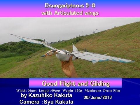 Dsungaripterus 5-8 with Articulated Wings: Very Good Flight and Gliding