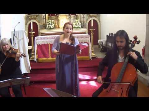 Strings n' Vox Trio