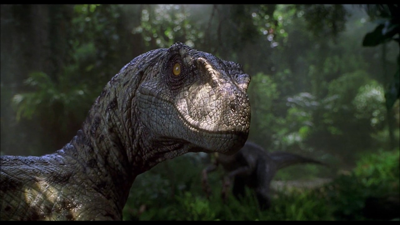 Jurassic Park Raptor, How Famous Dinosaurs Really Looked Like