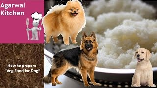SIMPLE VEG FOOD  FOR DOGS /AGARWAL KITCHEN/ DAHI CHAWAL FOR DOGS