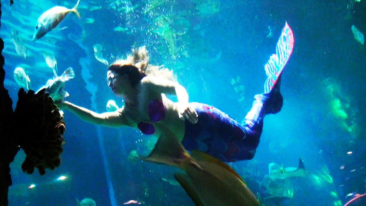 Real Mermaid Caught On Tape - YouTube