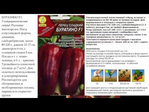 Сорт томата Розовый гигант: фото, отзывы, описание