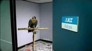 anz think tank ad