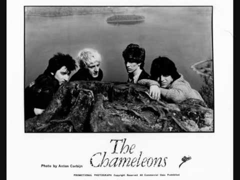 the chameleons-soul in isolation