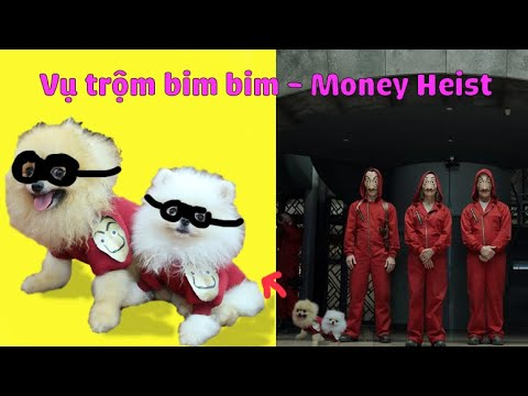 Dog Money Heist season 5 | funny dog family from YouTube · Duration:  3 minutes 27 seconds