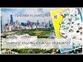 Штат Иллинойс МИНУСЫ и ПЛЮСЫ | Почему мы выбрали Чикаго? | Хорошо ли здесь жить?