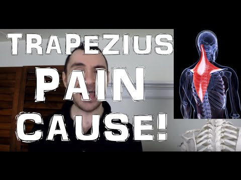 Zius Muscle Pain Tension Headaches Huge Cause