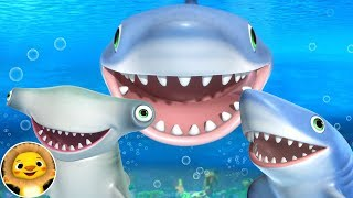 Shark Song! | Nursery Rhymes & Kids Songs! | Videos For Kids | Little Baby Animals