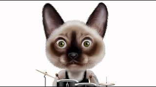 Chanson = Trois petits chats