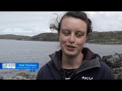 Volunteering on Handa Island - Long-term volunteers