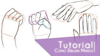 Tutorial ۰•●Como dibujar manos●•۰