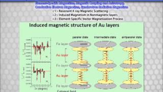 Nanostructure Magnetism 2013