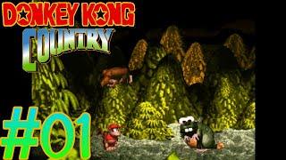 Donkey Kong Country 101% Walkthrough | Part 01