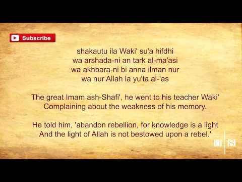 Knowledge Is Light || Talib Al Habib ᴴᴰ || Nasheed with Lyrics
