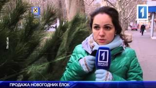 видео Новости за Декабрь 2015 года